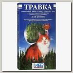 Травка для кошек АВЗ , лоток с питательным субстратом