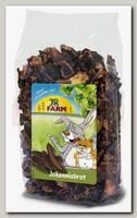 Лакомство для грызунов JR FARM Рожковое дерево