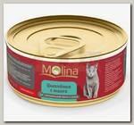 Консервы для кошек Molina, со вкусом цыпленка с манго в соусе