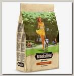 Сухой корм для взрослых собак Brooksfield Adult Dog All Breeds Beef, говядина и рис