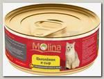 Консервы для кошек Molina цыпленок с сыром в желе
