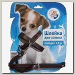 Комплект для щенков Зооник поводок + шлейка из кожи на подкладке 12 мм на блистере