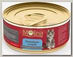 Консервы для кошек Molina цыпленок с крабами в желе