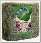 Сено для грызунов Vitakraft Vita Verde луговое с лепестками роз