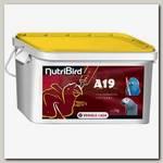 Корм для ручного вскармливания птенцов крупных попугаев VERSELE-LAGA NutriBird A19
