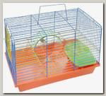 Клетка для грызунов Зоомарк Венеция-комплект 36х23х24 см