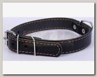 Ошейник для животных Collar кожаный одинарный, черный, 27-35 см