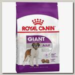 Royal Canin Giant Adult для собак старше 18/24 месяцев