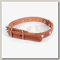 Ошейник для животных Collar кожаный двойной, коричневый, 27-35 см