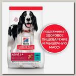 Сухой корм Hill's Science Plan для взрослых собак средних пород для поддержания иммунитета, с тунцом и рисом