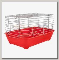 Клетка для морских свинок Дарэлл ECО, шаг прута 20 мм, 42*30*h24см