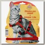 Комплект для кошек Зооник поводок + шлейка из стропы 10 мм на блистере
