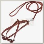 Поводок и шлейка для кошек и маленьких собак Аркон кожаный №2, цвет коньячный