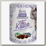 Лакомство для котят Brit Care Superfruits Kitten