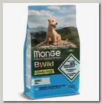 Беззерновой корм для взрослых собак мелких пород Monge Dog BWild Grain Free Mini из анчоуса с картофелем и горохом