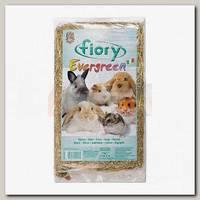 Сено для грызунов Fiory Evergreen