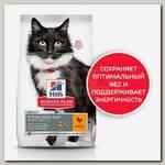 Сухой корм Hill's Sience Plan для взрослых стерилизованных кошек старше 7 лет, с курицей