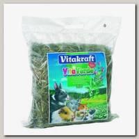 Сено для грызунов Vitakraft Vita Verde луговое с перечной мятой