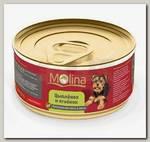 Консервы для собак Molina цыпленок с ягненком в желе