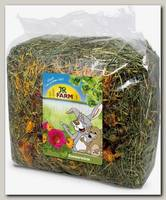 Сено для грызунов JR FARM цветочный луг