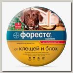 Ошейник для собак более 8 кг Bayer Foresto, защита 8 месяцев от клещей, блох и вшей