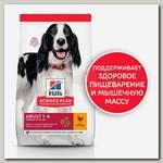 Сухой корм Hill's Science Plan для взрослых собак средних пород для поддержания иммунитета, с курицей