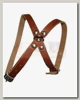 Шлейка для собак Аркон 8, цвет коньячный