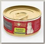 Консервы для кошек Molina цыпленок с лососем в желе
