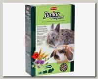 Основной корм для молодых декоративных кроликов Padovan Junior Coniglietti комплексный